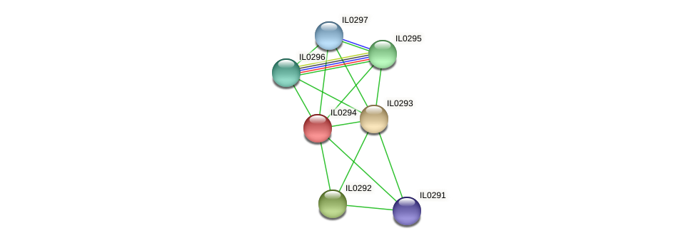 IL0294 protein (Idiomarina loihiensis) - STRING interaction network