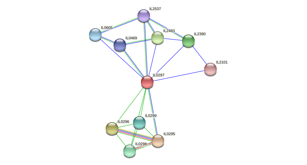 IL0297 protein (Idiomarina loihiensis) - STRING interaction network