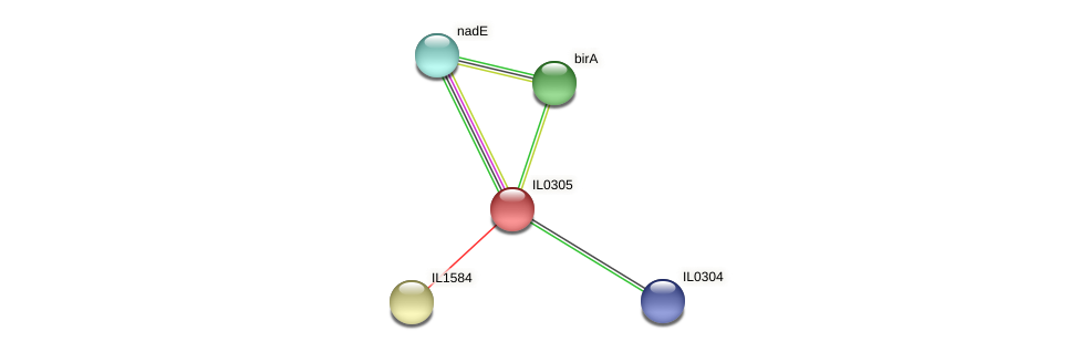 IL0305 protein (Idiomarina loihiensis) - STRING interaction network