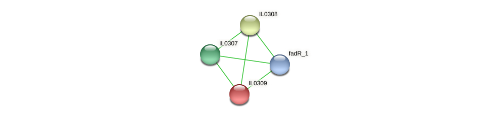 IL0309 protein (Idiomarina loihiensis) - STRING interaction network