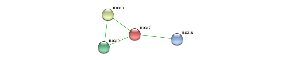 IL0317 protein (Idiomarina loihiensis) - STRING interaction network