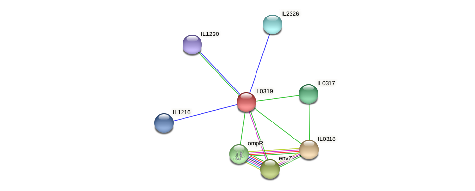 IL0319 protein (Idiomarina loihiensis) - STRING interaction network