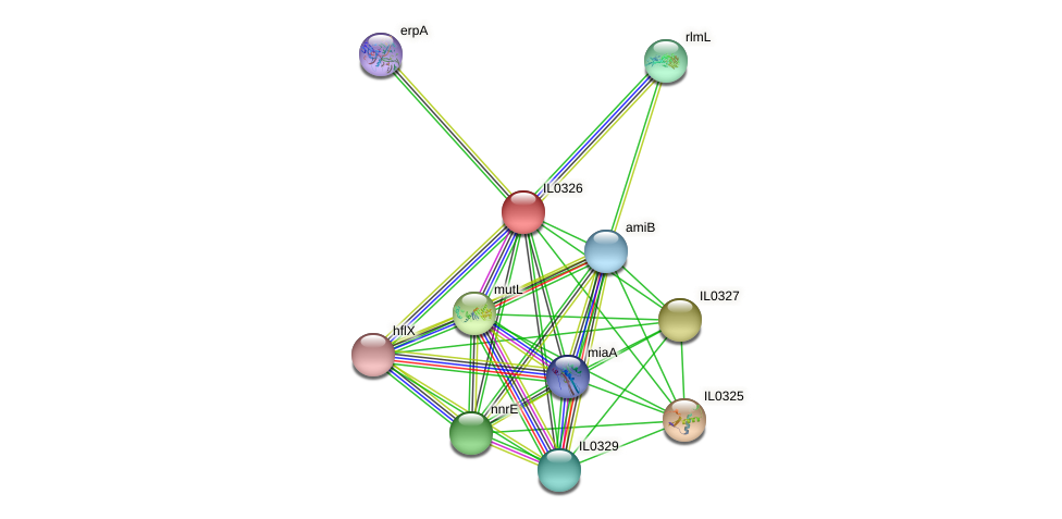 IL0326 protein (Idiomarina loihiensis) - STRING interaction network