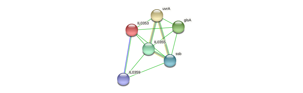 IL0353 protein (Idiomarina loihiensis) - STRING interaction network