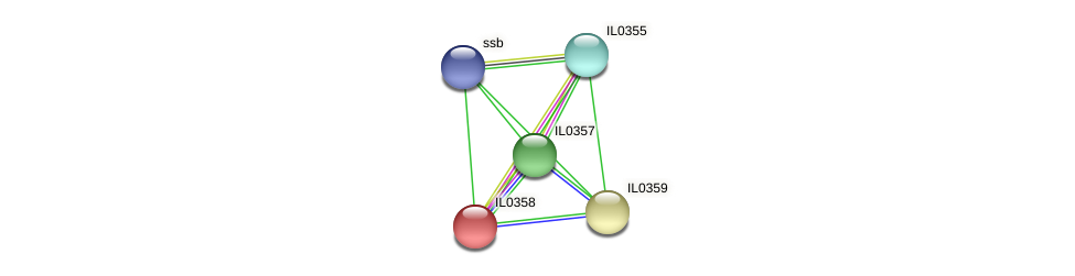 IL0358 protein (Idiomarina loihiensis) - STRING interaction network