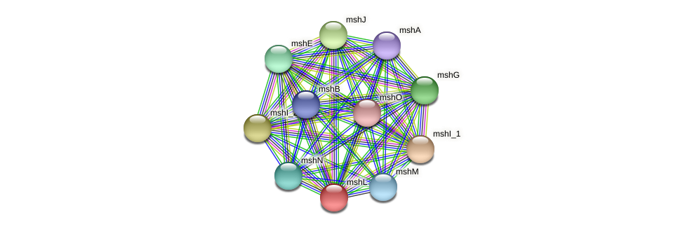 mshL protein (Idiomarina loihiensis) - STRING interaction network