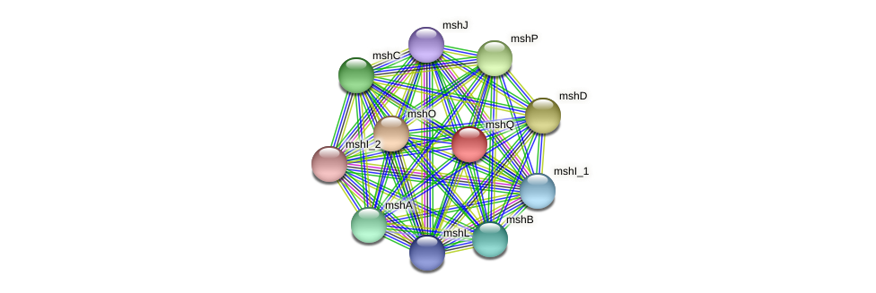 mshQ protein (Idiomarina loihiensis) - STRING interaction network