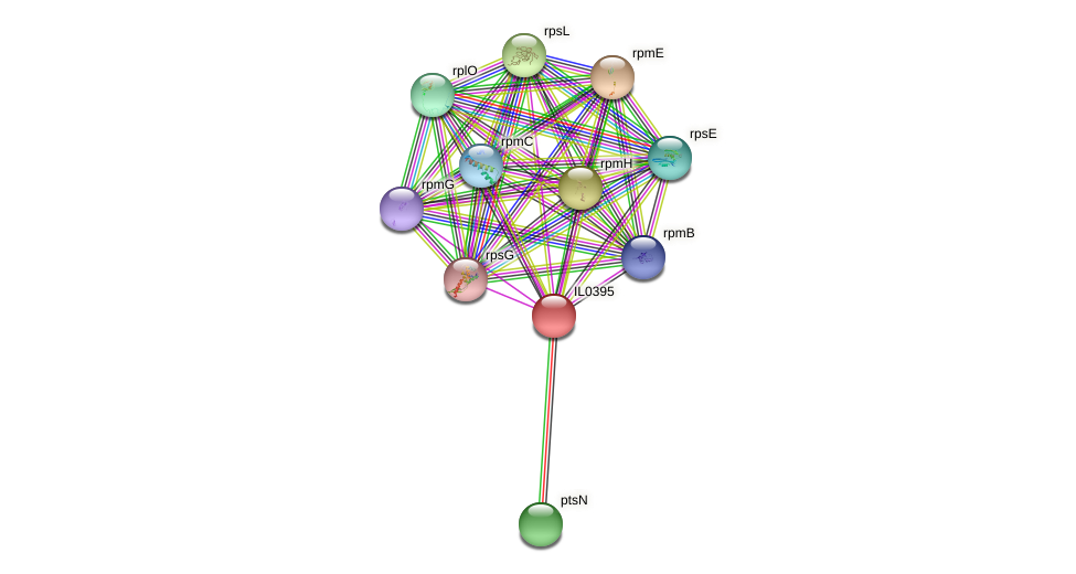 IL0395 protein (Idiomarina loihiensis) - STRING interaction network