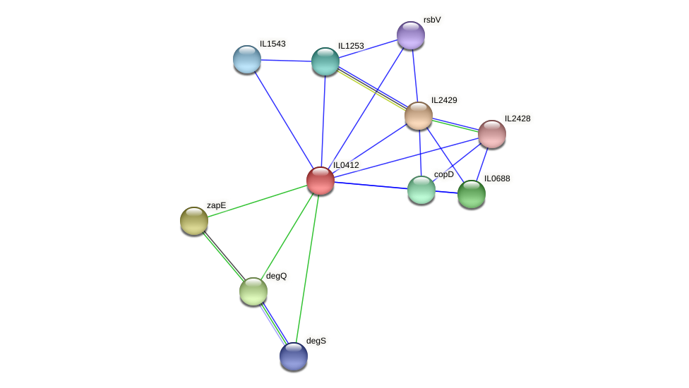 IL0412 protein (Idiomarina loihiensis) - STRING interaction network
