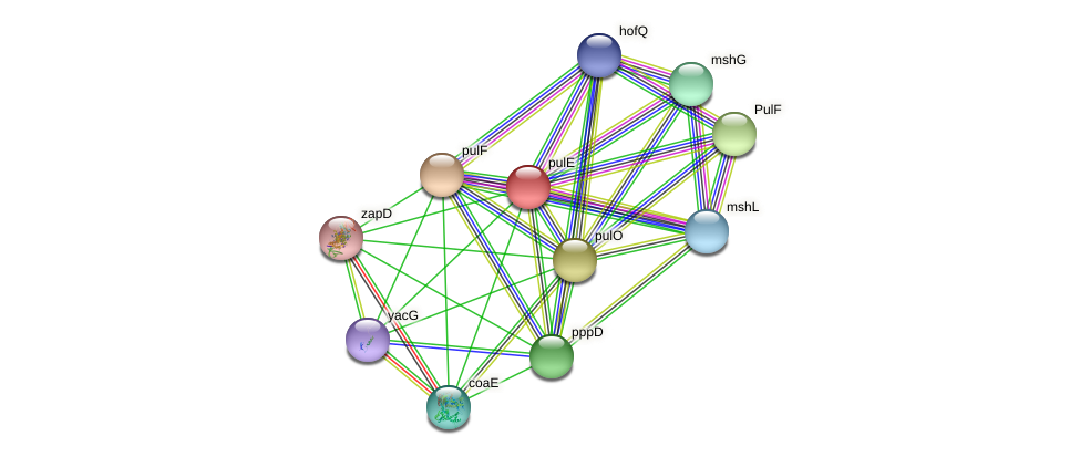 IL0452 protein (Idiomarina loihiensis) - STRING interaction network