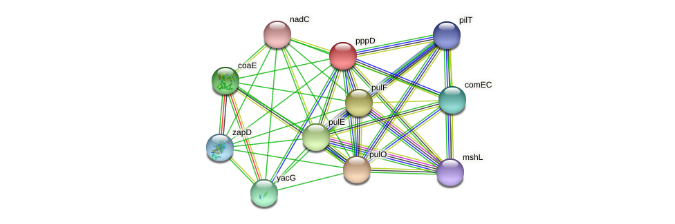pppD protein (Idiomarina loihiensis) - STRING interaction network