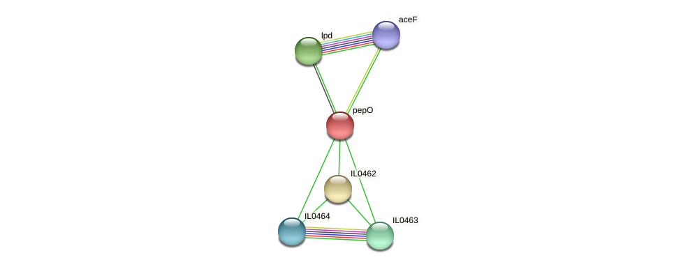 pepO protein (Idiomarina loihiensis) - STRING interaction network