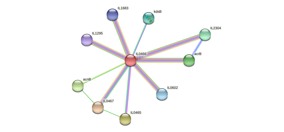 IL0466 protein (Idiomarina loihiensis) - STRING interaction network