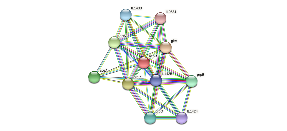 acnB protein (Idiomarina loihiensis) - STRING interaction network