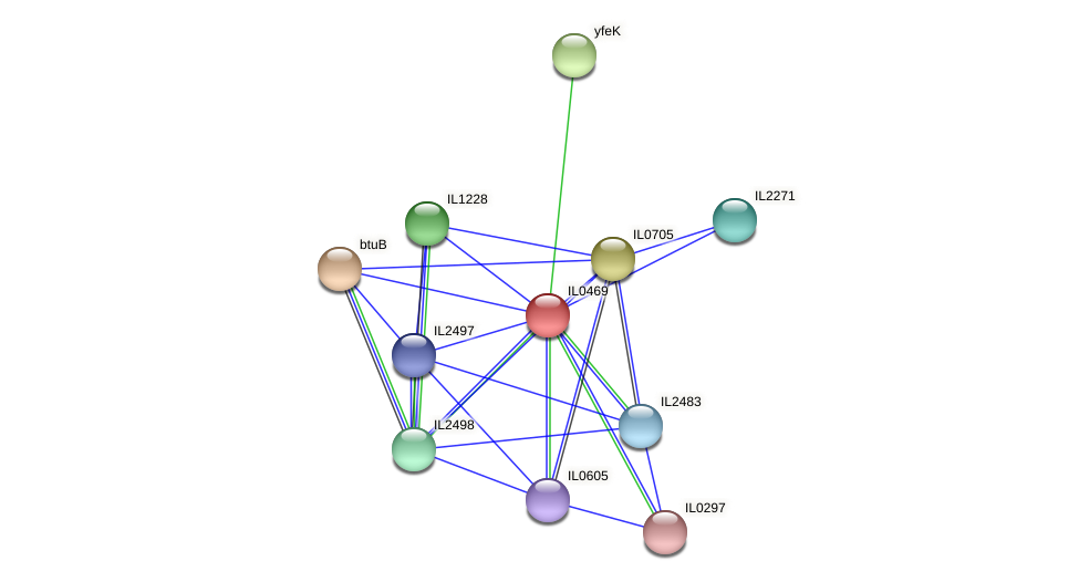 IL0469 protein (Idiomarina loihiensis) - STRING interaction network