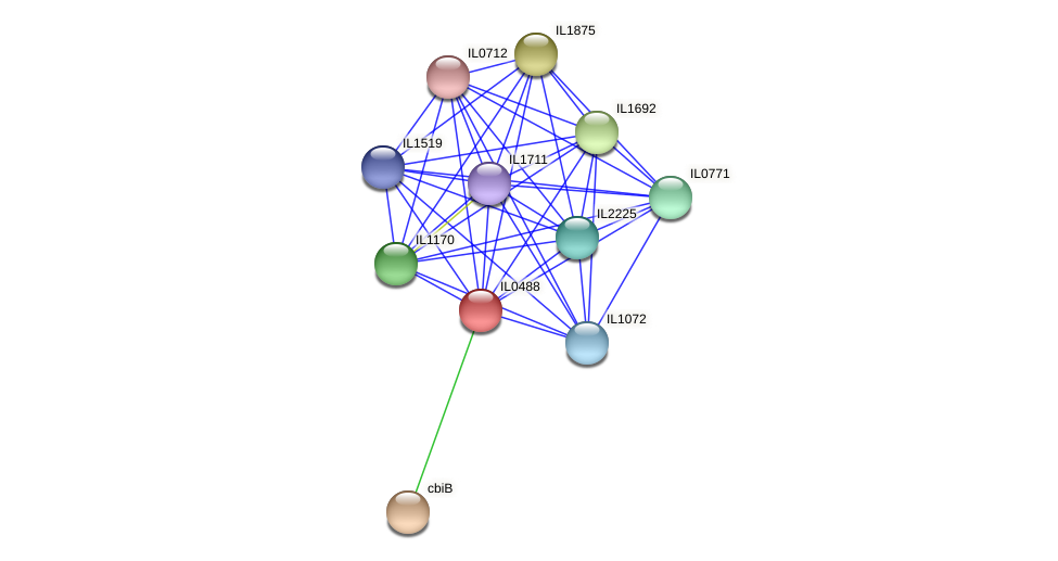 IL0488 protein (Idiomarina loihiensis) - STRING interaction network