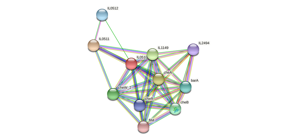 IL0510 protein (Idiomarina loihiensis) - STRING interaction network
