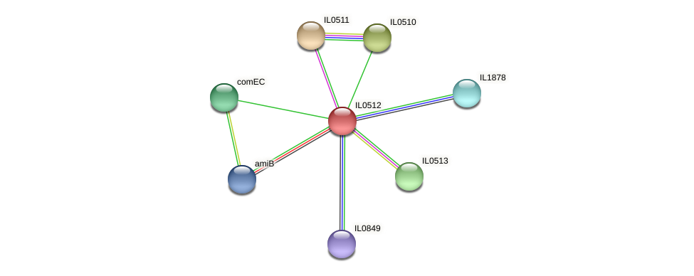 IL0512 protein (Idiomarina loihiensis) - STRING interaction network