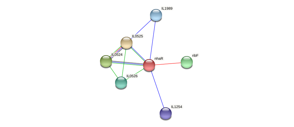 nhaR protein (Idiomarina loihiensis) - STRING interaction network
