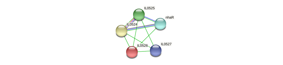 IL0526 protein (Idiomarina loihiensis) - STRING interaction network