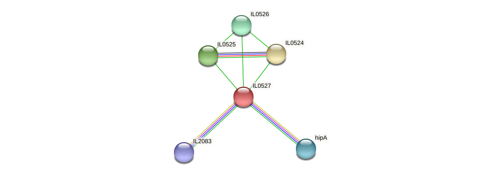 IL0527 protein (Idiomarina loihiensis) - STRING interaction network