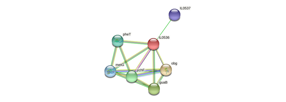 IL0536 protein (Idiomarina loihiensis) - STRING interaction network