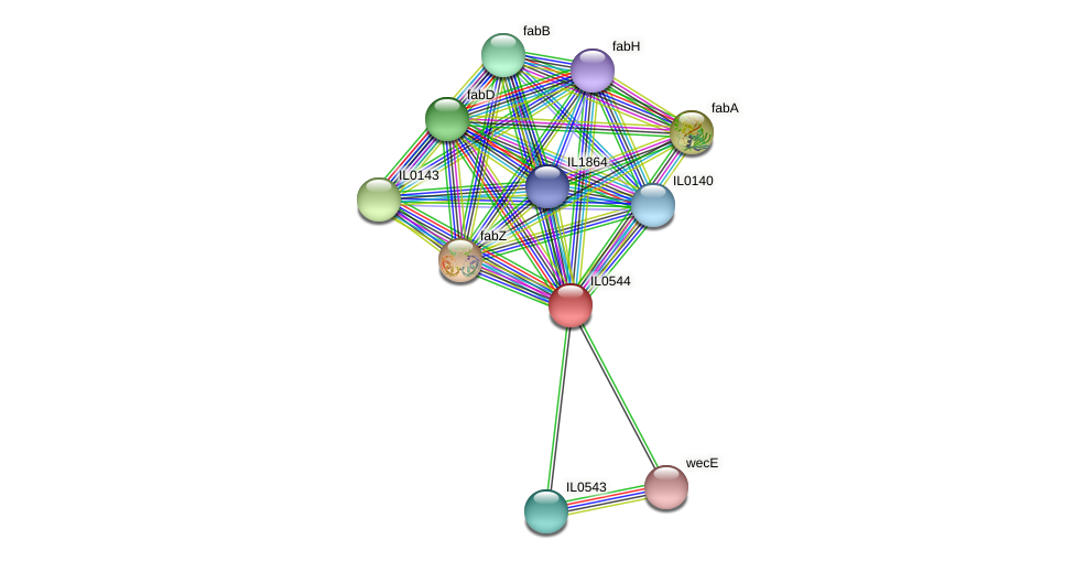 IL0544 protein (Idiomarina loihiensis) - STRING interaction network