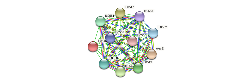 IL0546 protein (Idiomarina loihiensis) - STRING interaction network