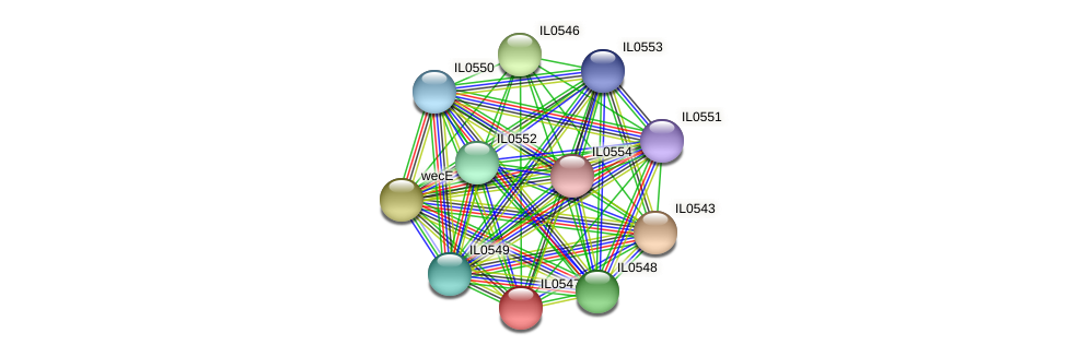 IL0547 protein (Idiomarina loihiensis) - STRING interaction network
