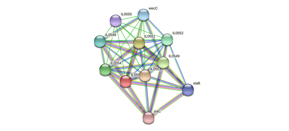 IL0550 protein (Idiomarina loihiensis) - STRING interaction network