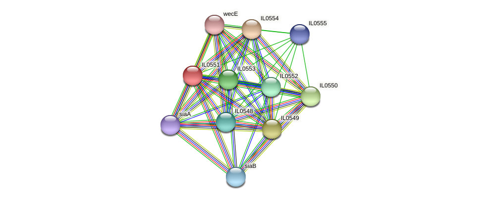 IL0551 protein (Idiomarina loihiensis) - STRING interaction network