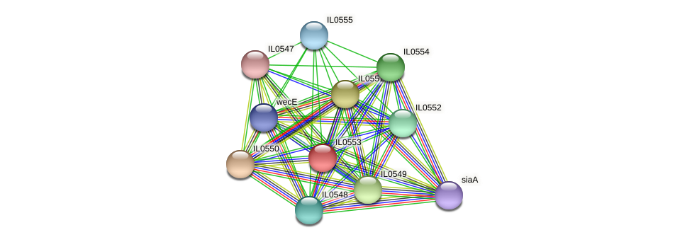 IL0553 protein (Idiomarina loihiensis) - STRING interaction network