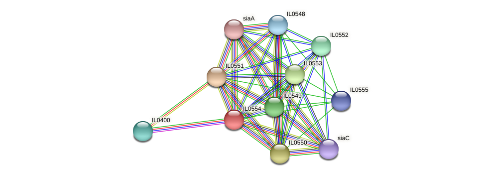 IL0554 protein (Idiomarina loihiensis) - STRING interaction network