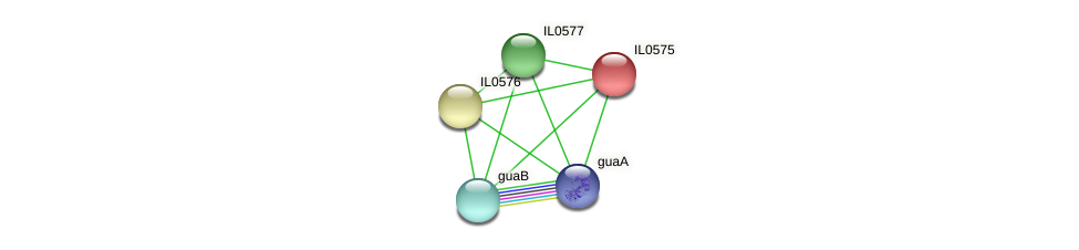 IL0575 protein (Idiomarina loihiensis) - STRING interaction network