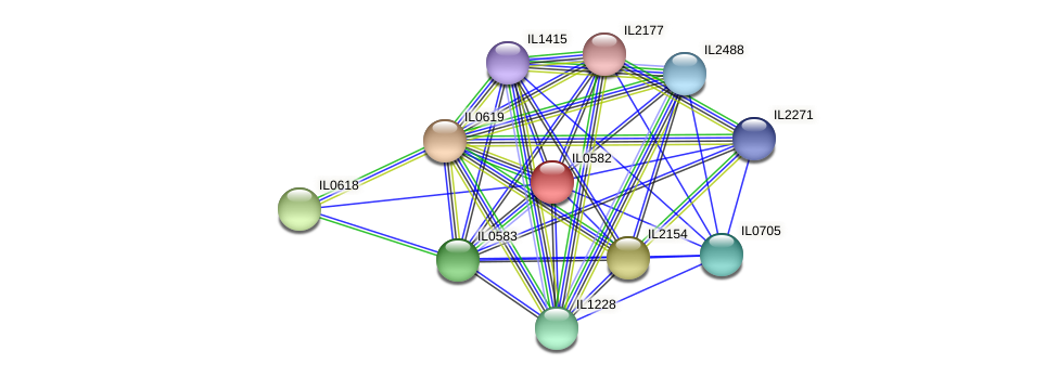 IL0582 protein (Idiomarina loihiensis) - STRING interaction network