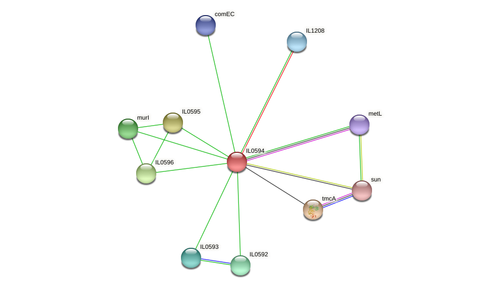 IL0594 protein (Idiomarina loihiensis) - STRING interaction network