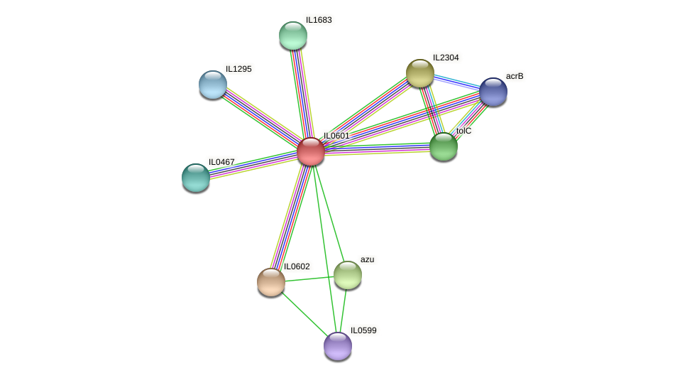 IL0601 protein (Idiomarina loihiensis) - STRING interaction network