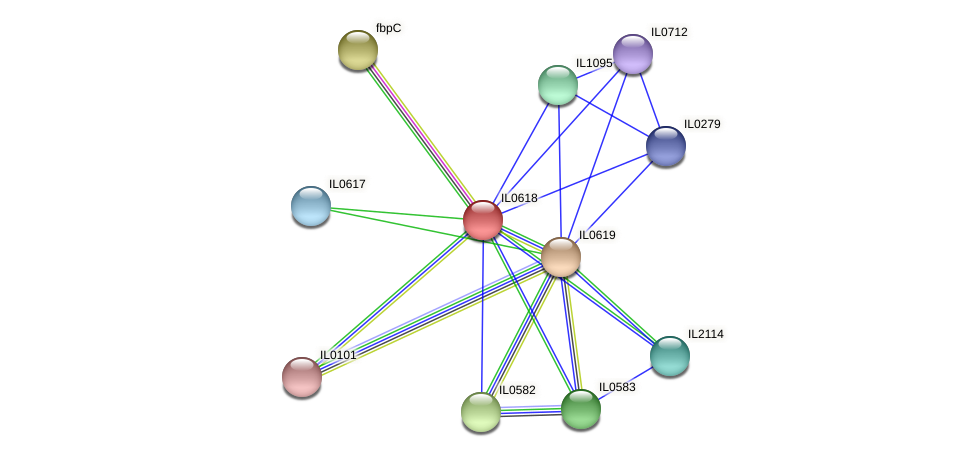 IL0618 protein (Idiomarina loihiensis) - STRING interaction network