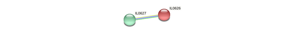 IL0626 protein (Idiomarina loihiensis) - STRING interaction network