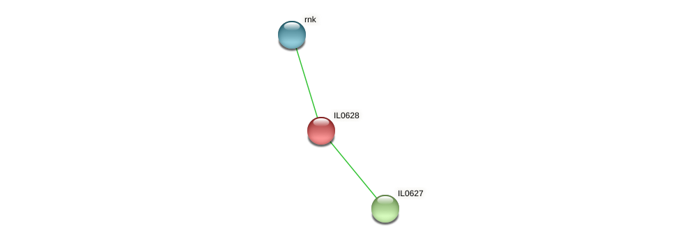 IL0628 protein (Idiomarina loihiensis) - STRING interaction network