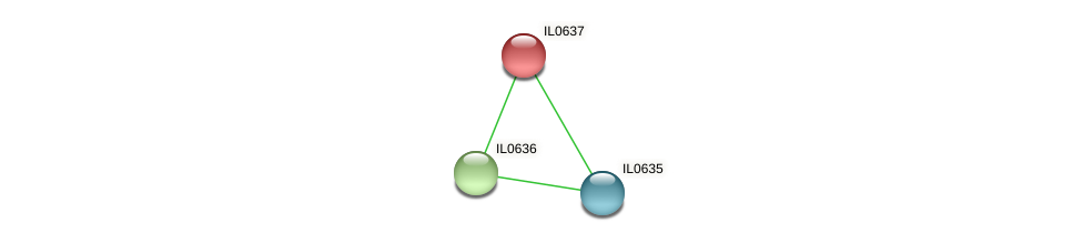 IL0637 protein (Idiomarina loihiensis) - STRING interaction network