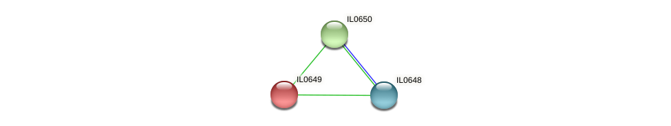IL0649 protein (Idiomarina loihiensis) - STRING interaction network