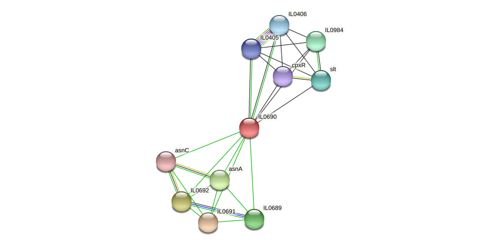 IL0690 protein (Idiomarina loihiensis) - STRING interaction network