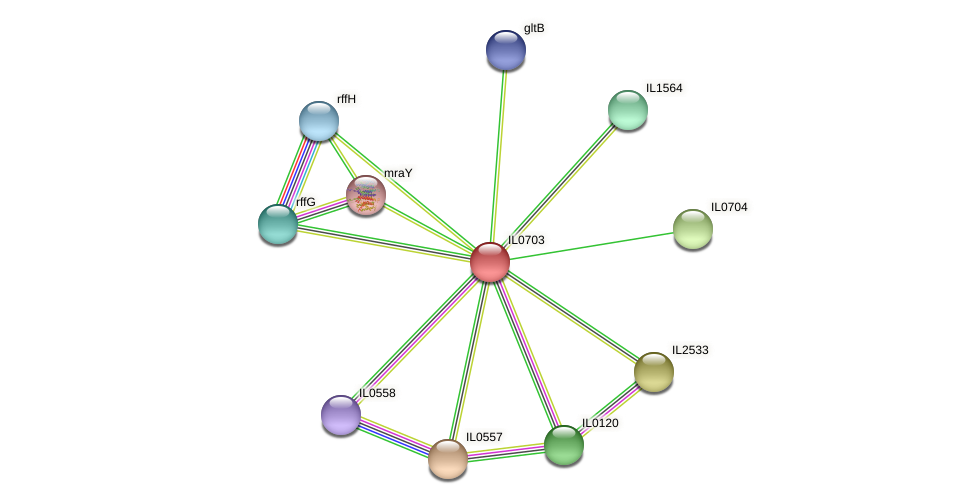 IL0703 protein (Idiomarina loihiensis) - STRING interaction network