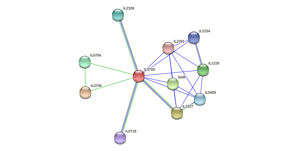 IL0705 protein (Idiomarina loihiensis) - STRING interaction network