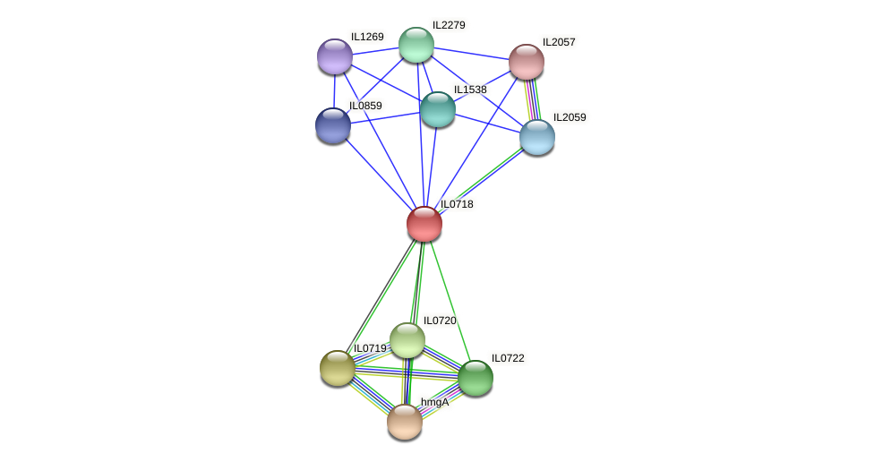 IL0718 protein (Idiomarina loihiensis) - STRING interaction network