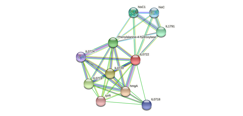 IL0722 protein (Idiomarina loihiensis) - STRING interaction network