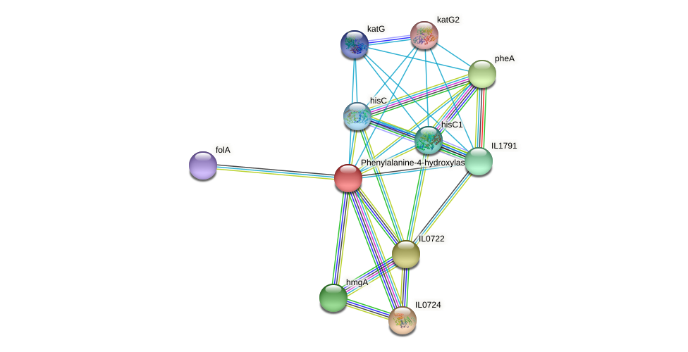 IL0725 protein (Idiomarina loihiensis) - STRING interaction network