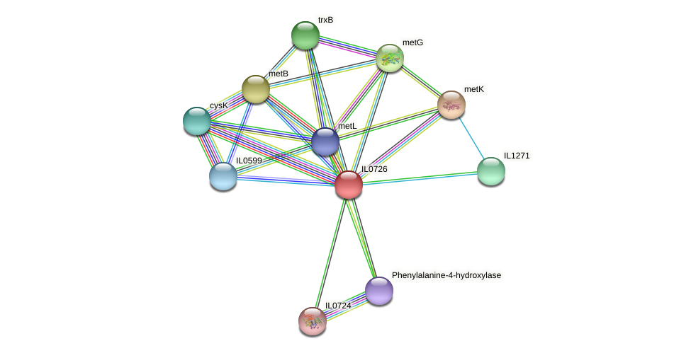 IL0726 protein (Idiomarina loihiensis) - STRING interaction network