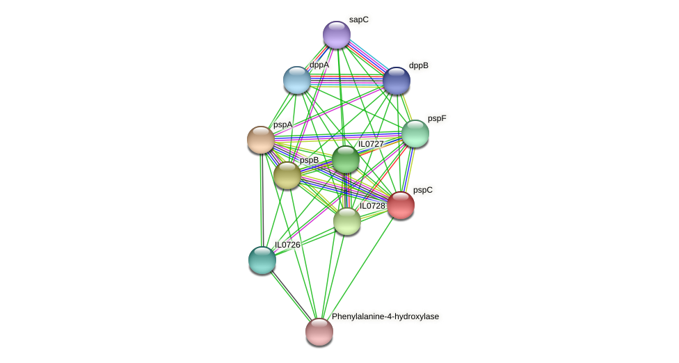 pspC protein (Idiomarina loihiensis) - STRING interaction network